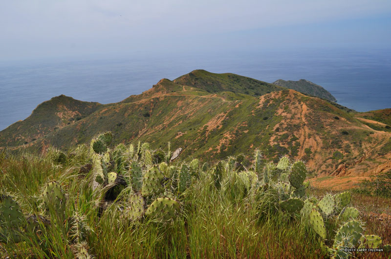 catalina trail